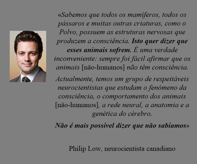 Philip Low.png