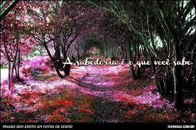 ALAMEDA6.jpg