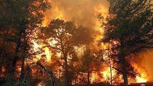 incendios.jpg