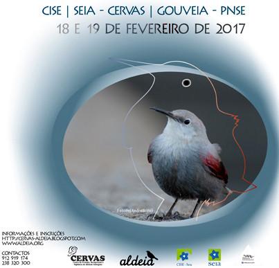 Aves Invernantes.jpg
