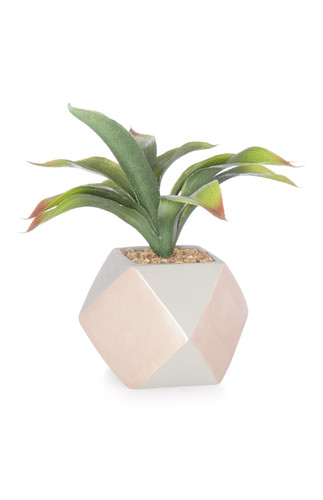 KIMBALL--------ROSE GOLD-CONCRET FAUX PLANT.jpg