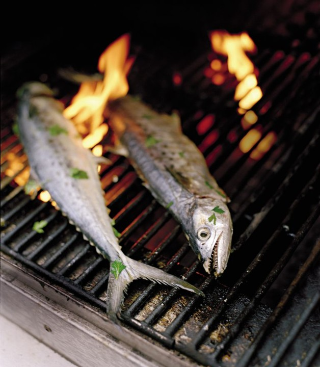 perfect-grilled-mackerel-1456790327.jpg