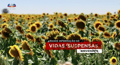 Vidas Suspensas brevemente