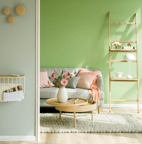Sala-decor-verde-5.jpg