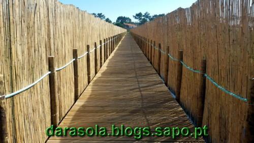 Passadico_Esmoriz_09.jpg