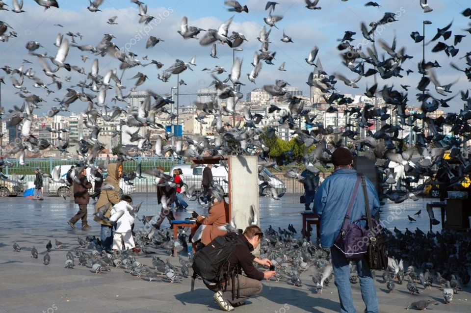 depositphotos_26301557-stock-photo-doves-on-taksim