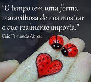 FB_IMG_1486339343030.jpg