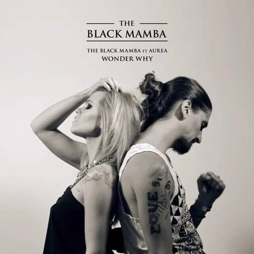 """""""Wonder Why"""" é o novo single dos The Black Mamba com Aurea_disponível nas lojas digitais dia 23 de Junho"""