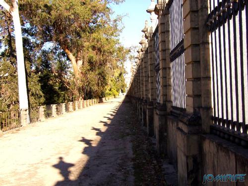 Jardim Botânico da Universidade de Coimbra (1) Vedação [en] Botanical Garden of the University of Coimbra - Railing