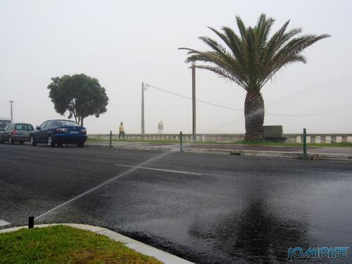 Regador virado para a estrada só serve para lavar os carros na Figueira da Foz (3) [en] Watering facing the road only serves to wash the cars