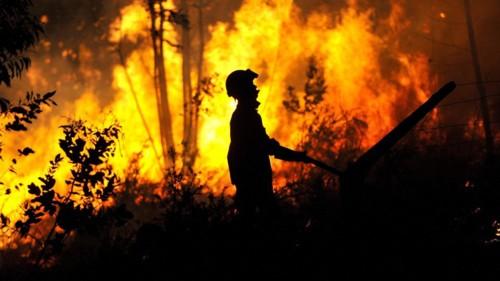 incendio-fogo-florestal.jpg