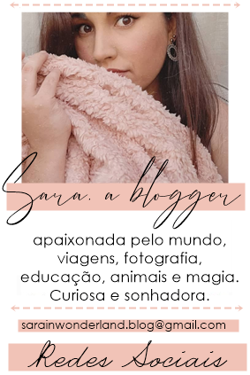 perfil blogger.png