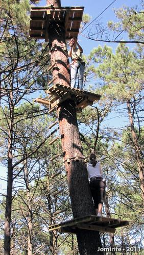 Parque Aventura: No 2º andar da árvore