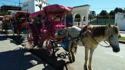 Marrocos viagem