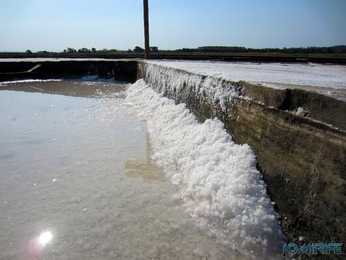 Salinas da Figueira da Foz (10) Sal a formar-se [en] Salt fields of Figueira da Foz in Portugal