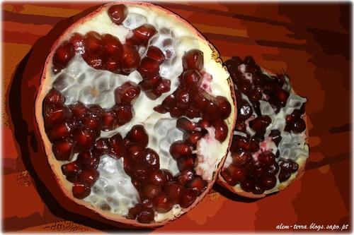 fruto proibido - fruto prohibido, a romã não é!