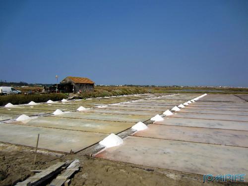 Salinas da Figueira da Foz (9) Montes de sal [en] Salt fields of Figueira da Foz in Portugal