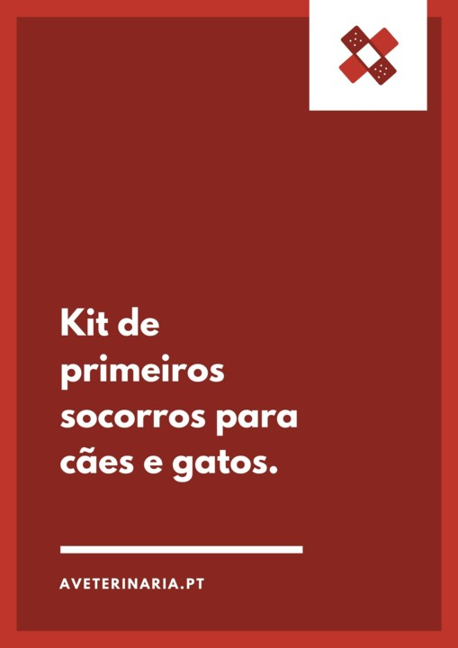 kit-primeiros-socorros-cães-gatos.jpg