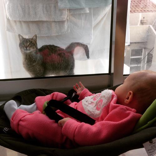 Maria e a gatinha.jpg