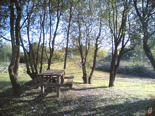 Parque do Lago em Maiorca: Mesas à sombra