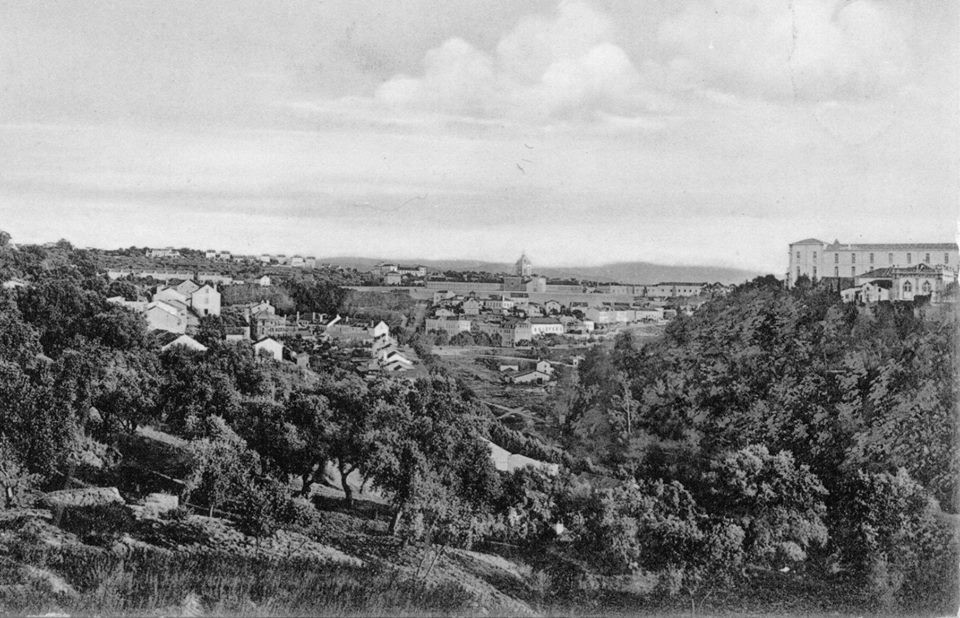 Fig. 10. Quinta de Santa Cruz, Montarroio, Mata do