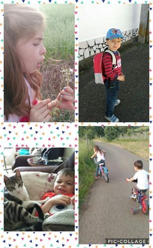 Collage 2017-05-07 09_26_37.jpg