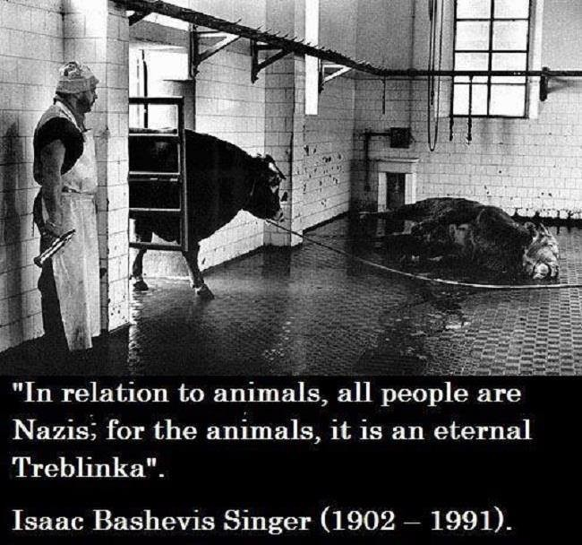 Holocausto animal.jpg