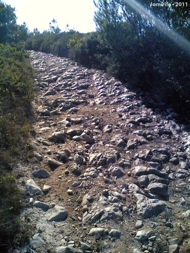 Estrada de pedras na Serra da Boa Viagem (Fig Foz)