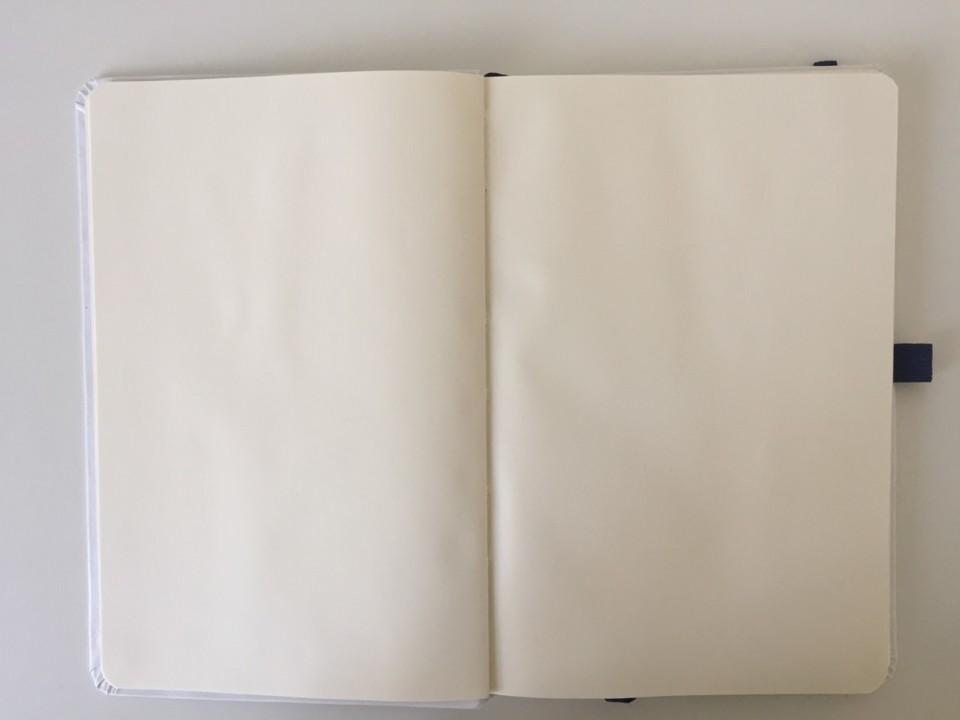 livro branco.jpg