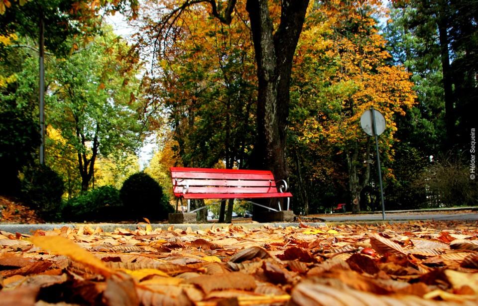 Outono 8 -Parque - HS.jpg