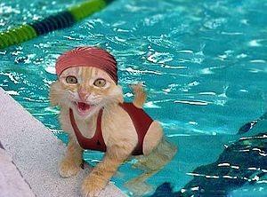 aprender a nadar 7.jpg