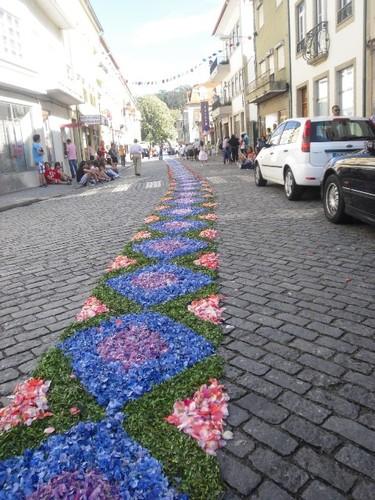 Passadeira de Flores Vouze2011
