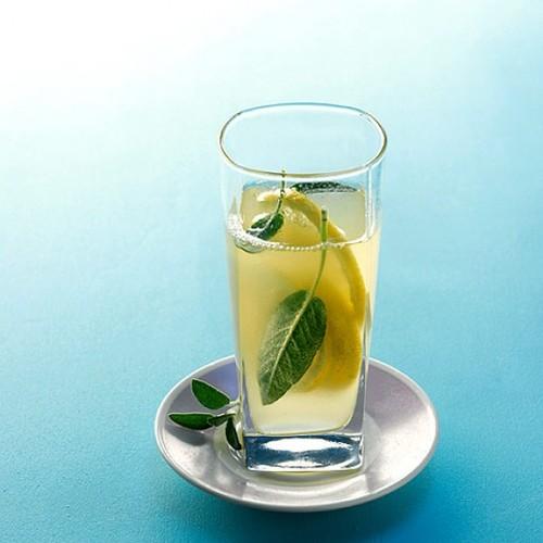 Limonada de Hortelã e Salvia