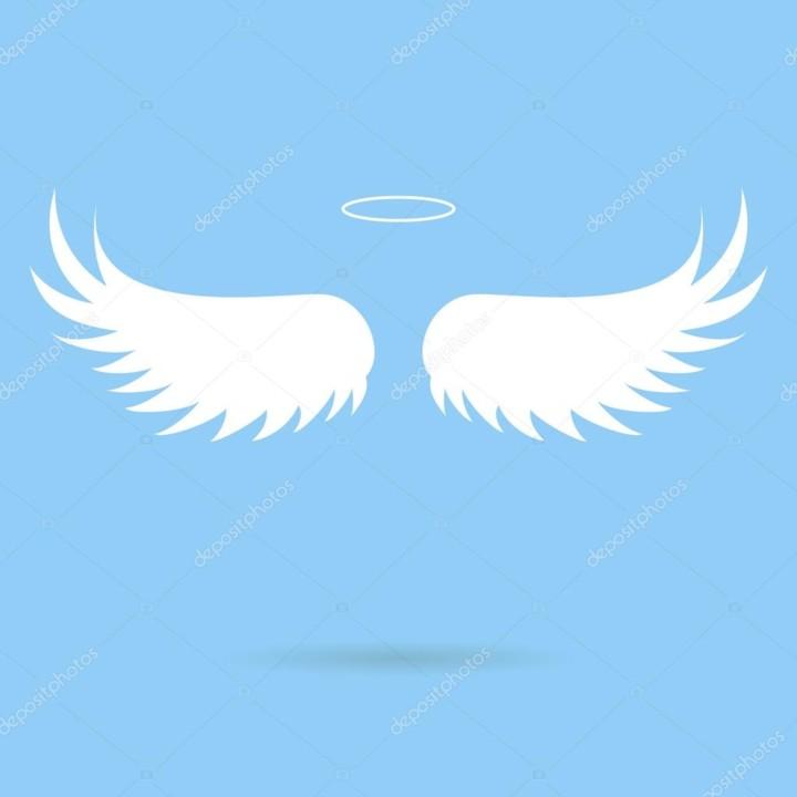 asas de papel.jpg