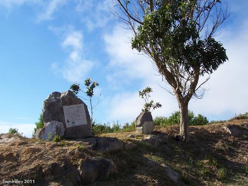 Parque do Dia Mundial da Floresta na Serra da Boa