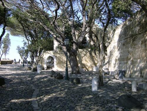 Castelo de S. Jorge (Foto de Rogério Martins Simões)