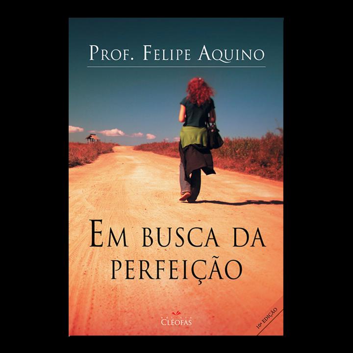 em_busca_da_perfeicao.png