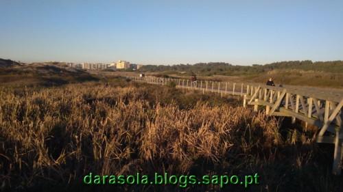 Passadico_Vila_Conde_17.jpg
