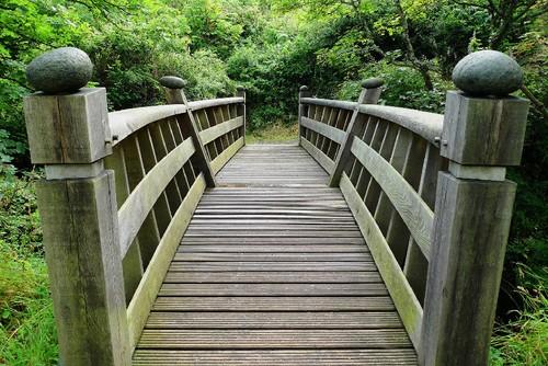 bridge-2062748_1920.jpg