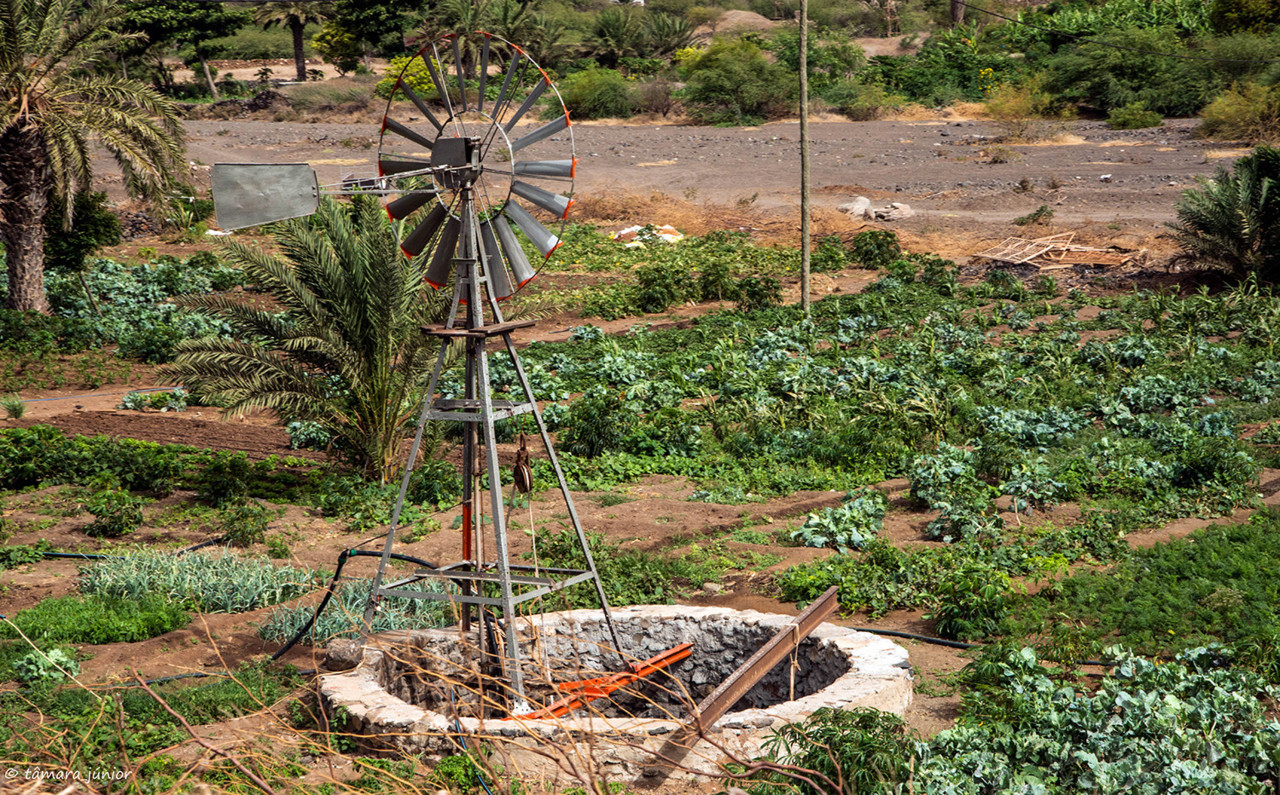 2017- 14º dia - Cabo Verde-S. Vicente - Volta à