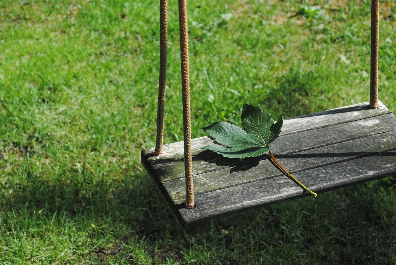 leaf-2471187_1920.jpg