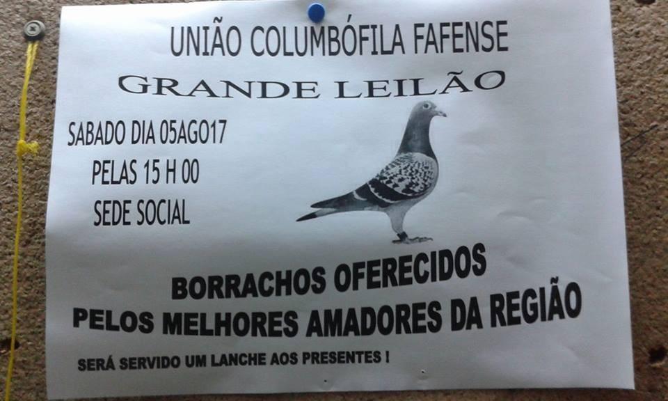 Leilão Fafe.jpg