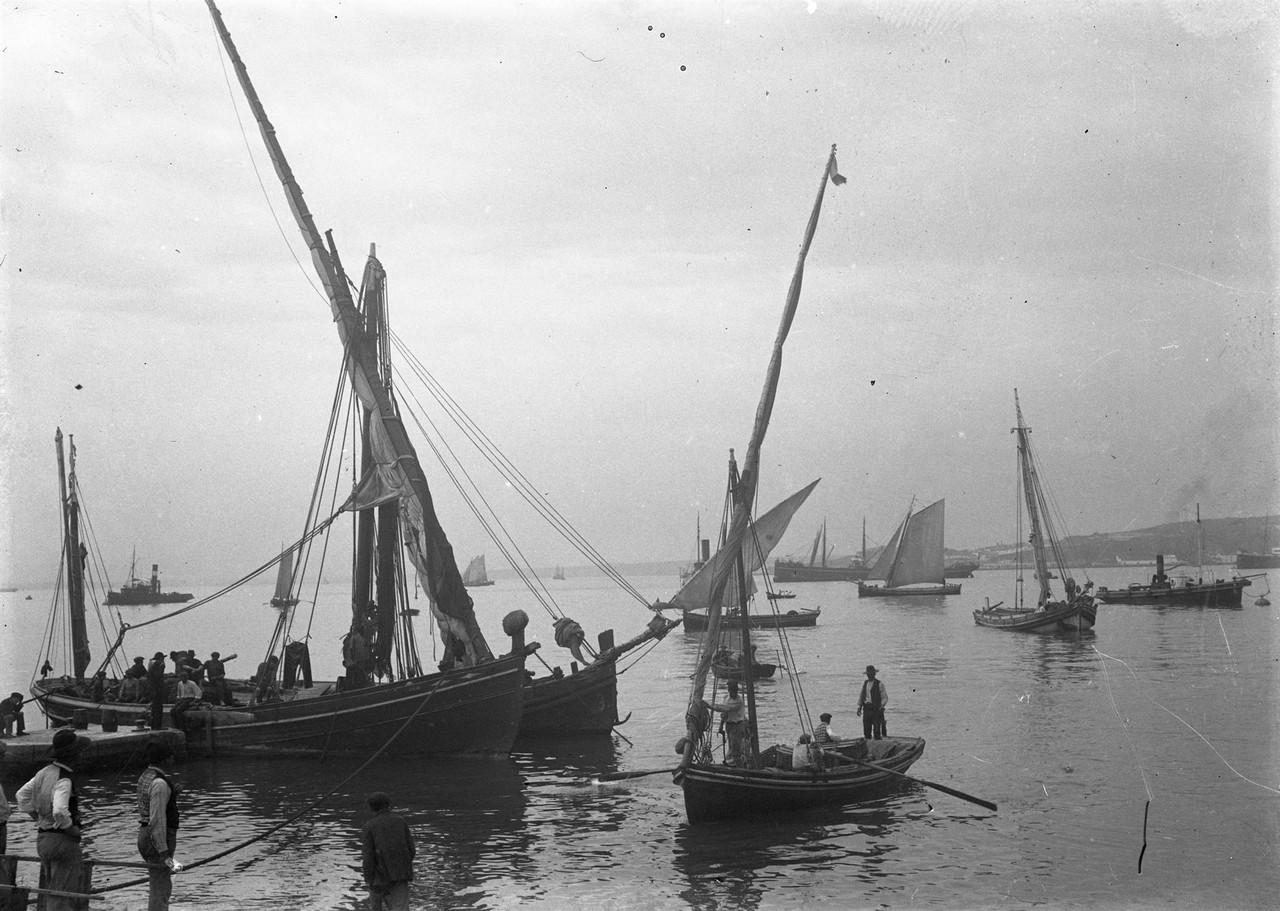 Fragatas no rio Tejo.jpg