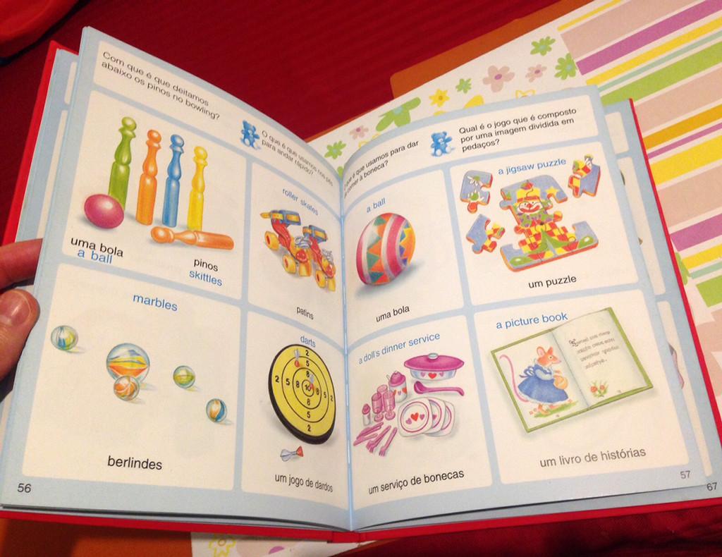 dicionario imagens 7.jpg