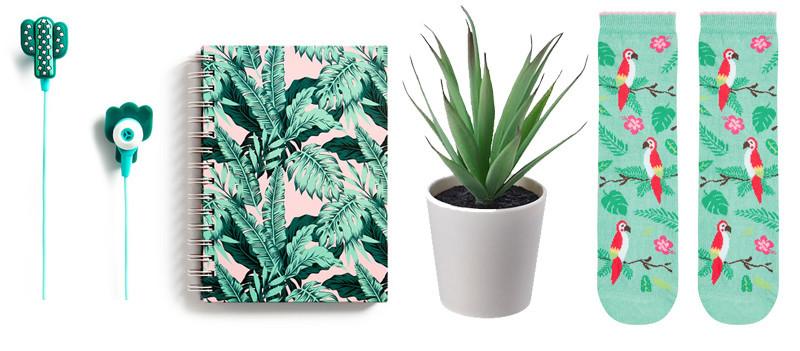 plantas2.jpg
