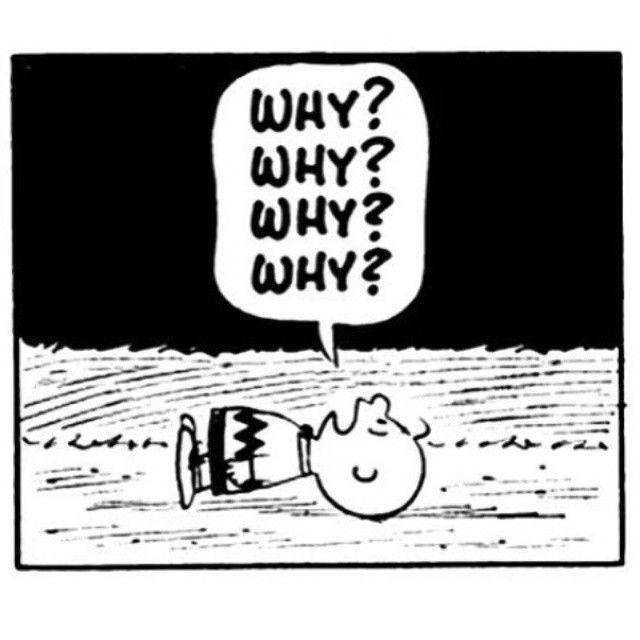 215871-Why-Why-Why-Why-Why.jpg
