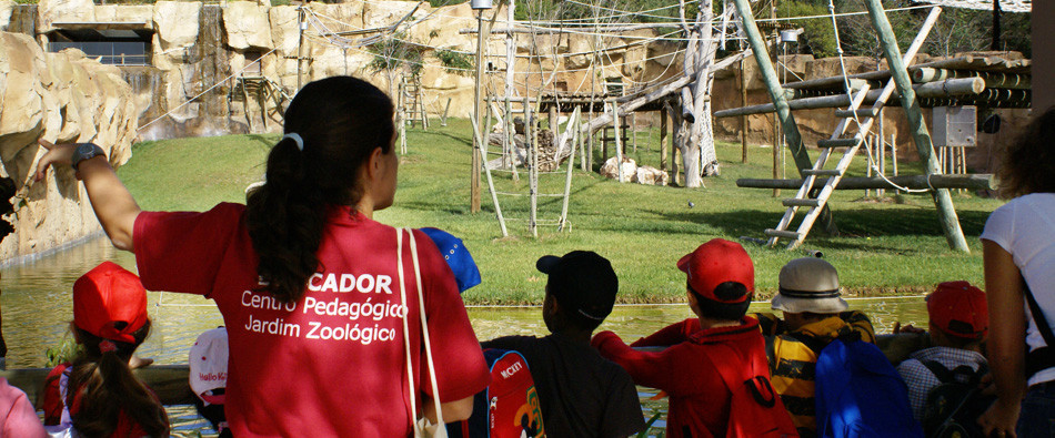 workshop-educacao-ambiental-zoo.jpg