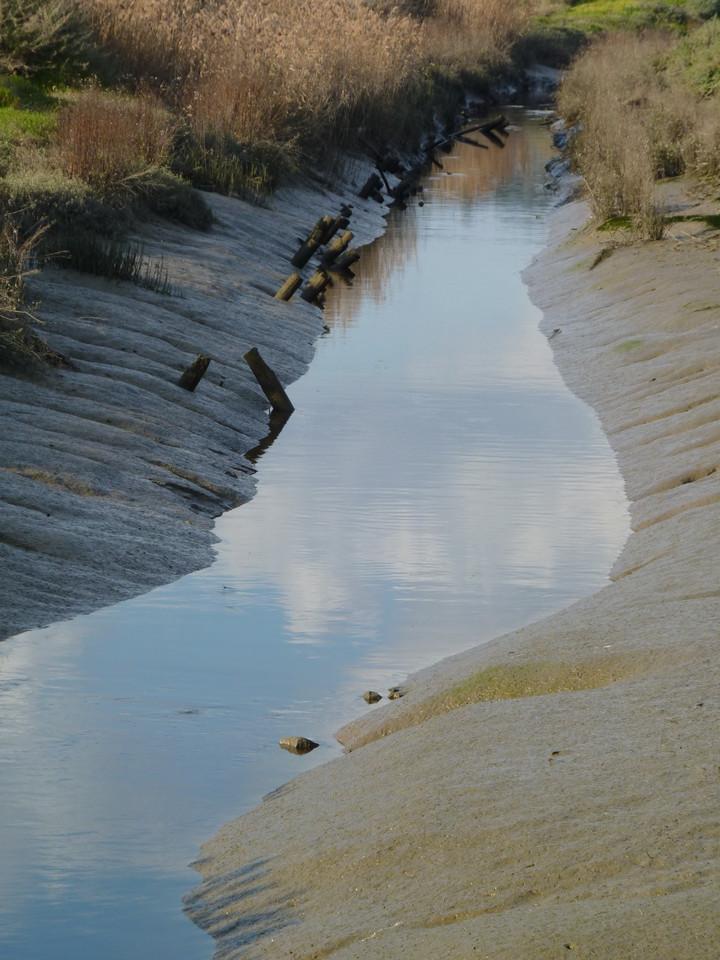 Parque Linear Ribeirinho do Estuário do Tejo (25)