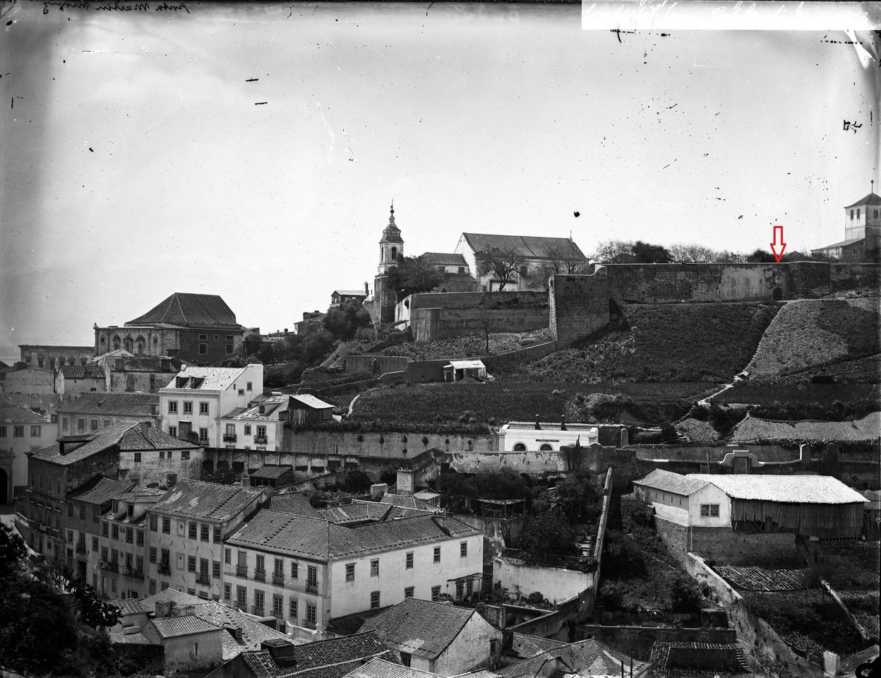 Panorâmica sobre a encosta do Castelo, com a Port