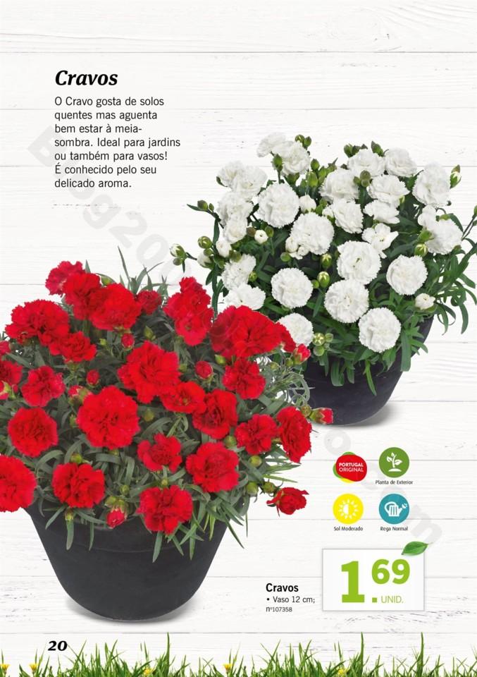 Mercado-de-Plantas-A-partir-de-04.04-01_019.jpg